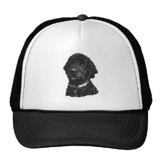 Northerndood Trucker Hat -Image Only