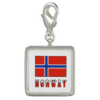 Norway Flag and Word Snow
