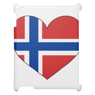 Norway Flag Simple iPad Case