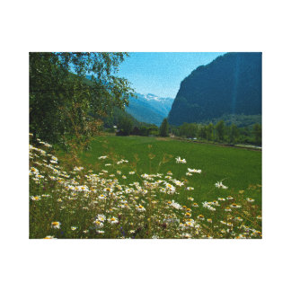 Norway spring flowers stretched canvas print