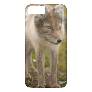 Norway, Svalbard Archipelago, Spitsbergen 6 iPhone 7 Plus Case
