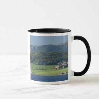 Norway, Trondheimsforden, Trondheim. Typical Mug