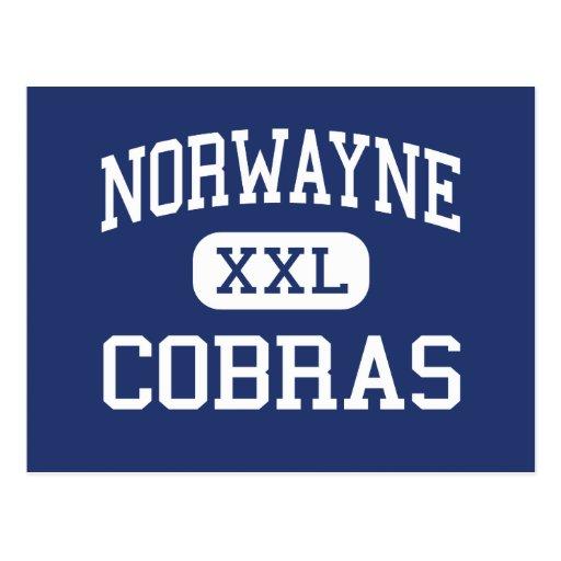 Norwayne Cobras Middle Fremont Post Card