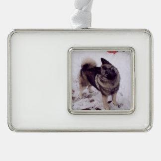 Norwegian_Elkhound_full 2 Silver Plated Framed Ornament