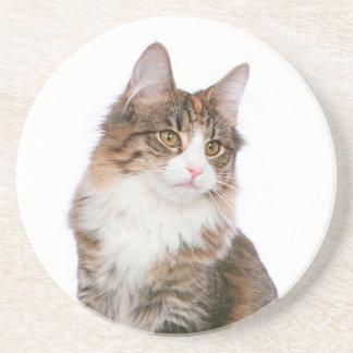 Norwegian Forest Cat Coaster