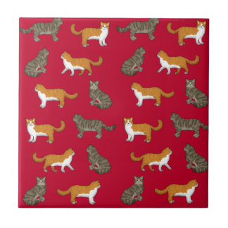 Norwegian forest cat selection ceramic tile