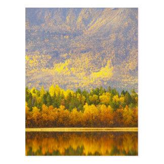 Norwegian Lapland in the autumn colors Postcard