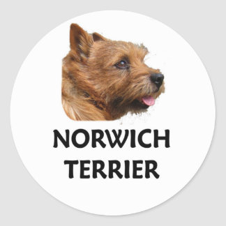 Norwich terrier classic round sticker