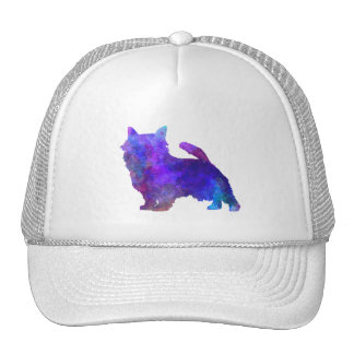 Norwich Terrier in watercolor Cap