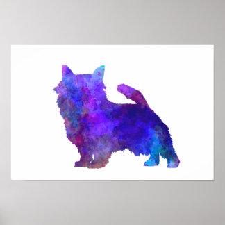 Norwich Terrier in watercolor Poster