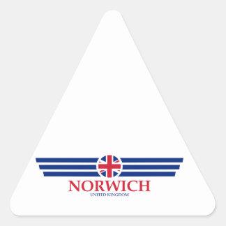 Norwich Triangle Sticker