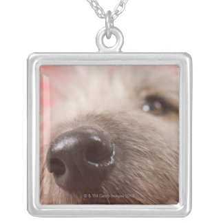Nose of dog necklace