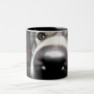 Nosey Husky Dog Nose Two Tone Coffee Mug