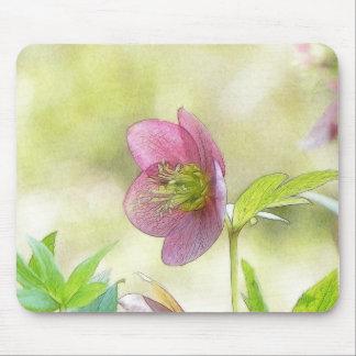 Nostalgic Hellebore Flower Art Mousepads