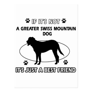 Not a greater swiss mountain dog postcard