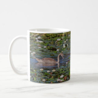 Not an Ugly Duckling Coffee Mug