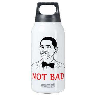 Not bad - meme 0.3 litre insulated SIGG thermos water bottle