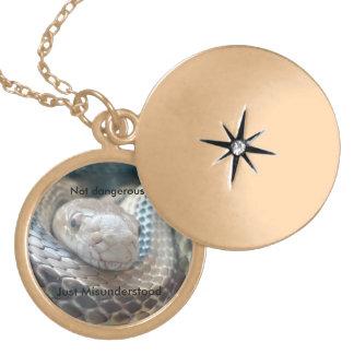 Not dangerous just misunderstood locket necklace