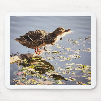 Not Duck Mouse Pad