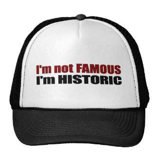 Not Famous I'M Historic Hats
