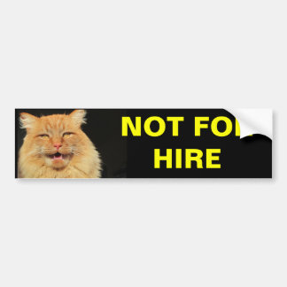 Not For Hire (Pumpkin) Bumper Sticker