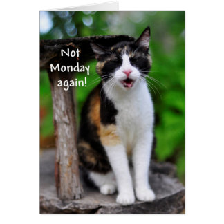 """Not Monday Again!"" Humorous Calico Cat Card"