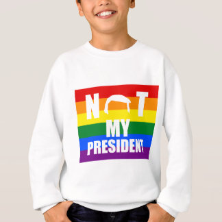 Not My President Pride Flag Sweatshirt