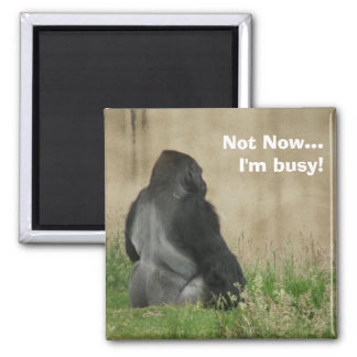 Not Now...I'm busy! Magnet