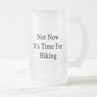 Not Now It's Time For Hiking Frosted Glass Mug