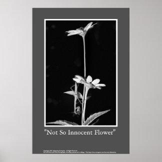 Not So Innocent Flower Poster