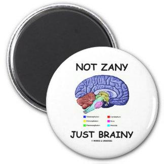 Not Zany Just Brainy Brain Anatomy Humor Refrigerator Magnet