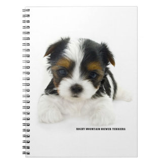 Note Book 80 Pages - Biewer Terrier Puppy