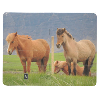 Note Book With Icelandic Horses and Houses Picture