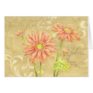 Note Card Gerbera Daisy Garden Notes