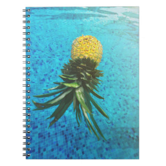 Notebook floating pineapple