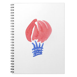 Notebook with air balloon