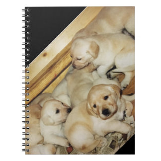 Notebook with photo of yellow lab puppies