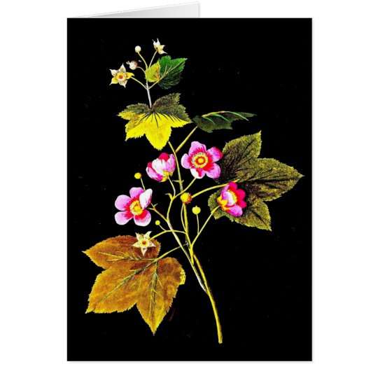 Notecard-Botanical Art-Mary Delany 4 Card