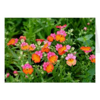 Notecard Pink and Orange Flowers