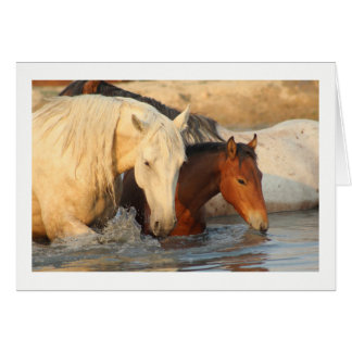 Notecard showing showing Wild Horses and her baby