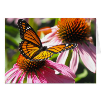 Notecard with Monarch Butterfly