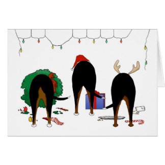Nothin' Butt A Swissie Christmas Card