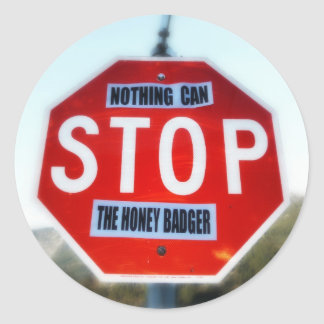 Nothing Can STOP th Honey Badger Round Sticker