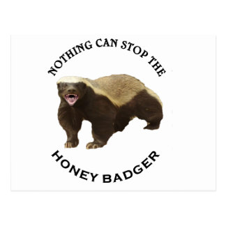 Nothing Can Stop the Honey Badger Image Postcard