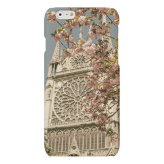 Notre Dame de Paris in Pink Spring Flowers