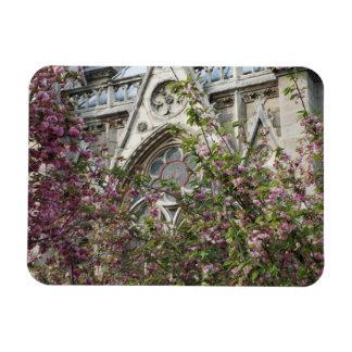 Notre Dame spring Magnet