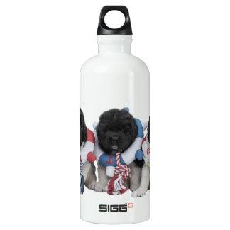 Notta Bear Newfoundlands Water Baby Water Bottle SIGG Traveller 0.6L Water Bottle
