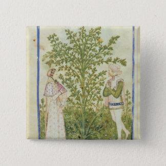 Nouv Acq Lat Celery, from 'Tacuinum Sanitatis' 15 Cm Square Badge