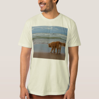 Nova Scotia Duck Tolling Retriever Ocean Cautious T-Shirt
