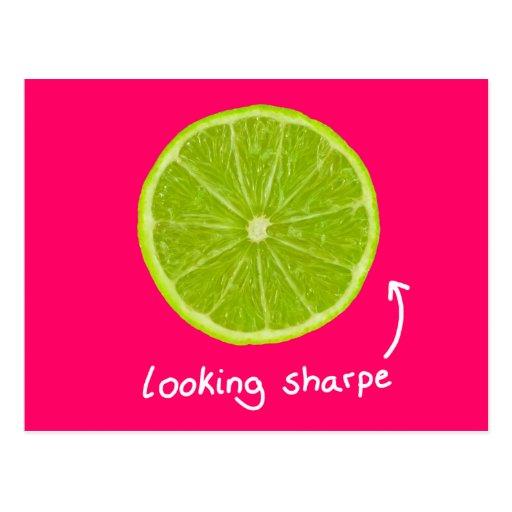 "novelty ""looking sharpe"" lime postcard"
